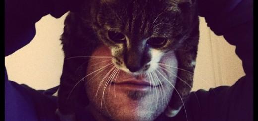 猫と合体!誰でもキャットマンに変身できる方法