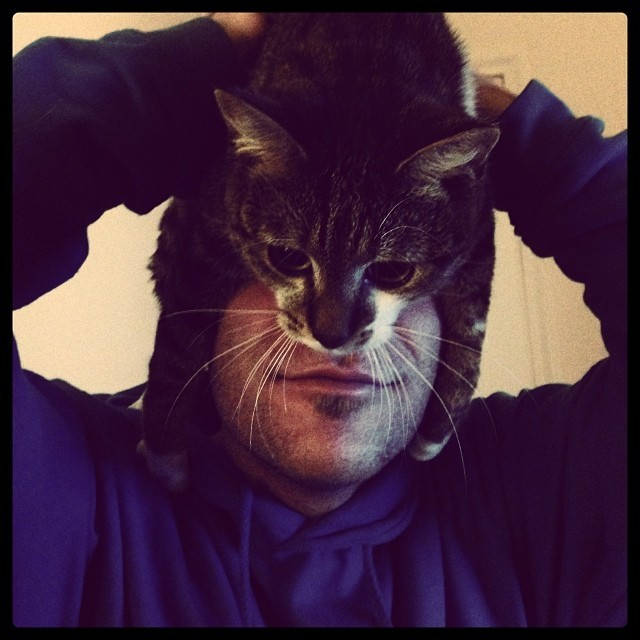 catman3
