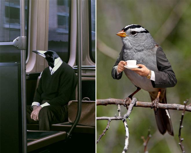 bird-with-arms7