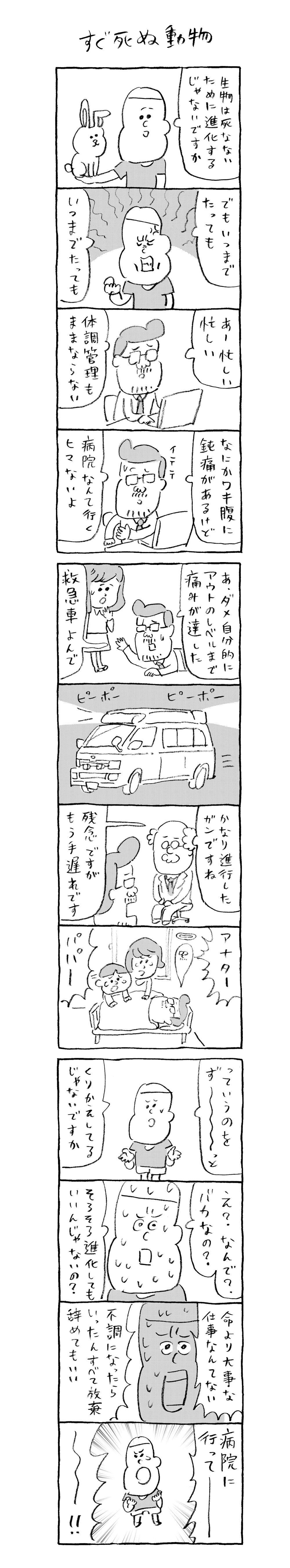 koyama2_R