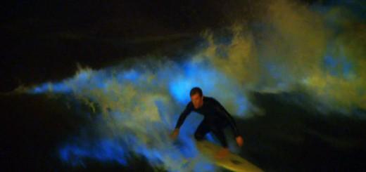 ドキドキが止まらない!夜光虫が発生した夜のサーフィン