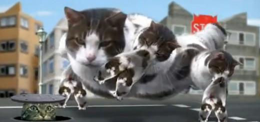 【まさにカオス】リアルなネコバスが大量出現する動画が怖いwww