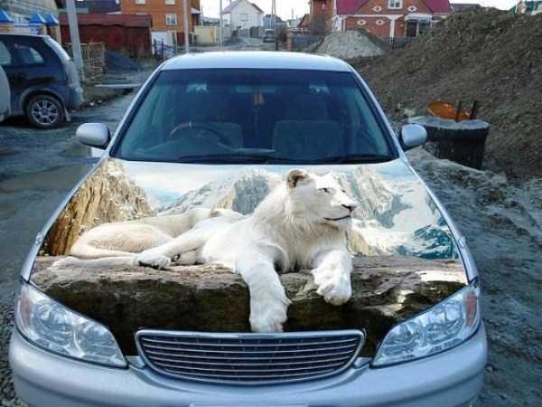 custom-airbrushed-cars-57