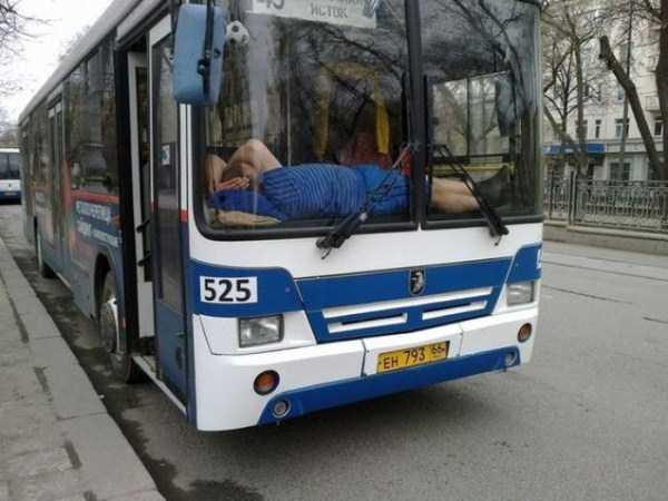 people-can-sleep-everywhere-5