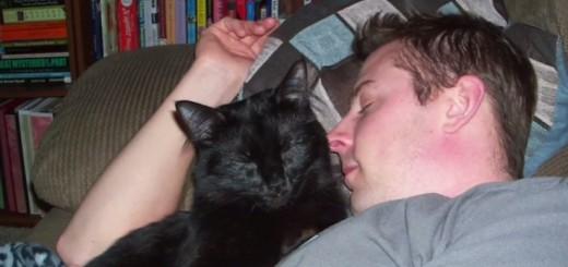 全部当てはまると症状は深刻!?10段階でチェック出来る、自分の「猫依存」生活