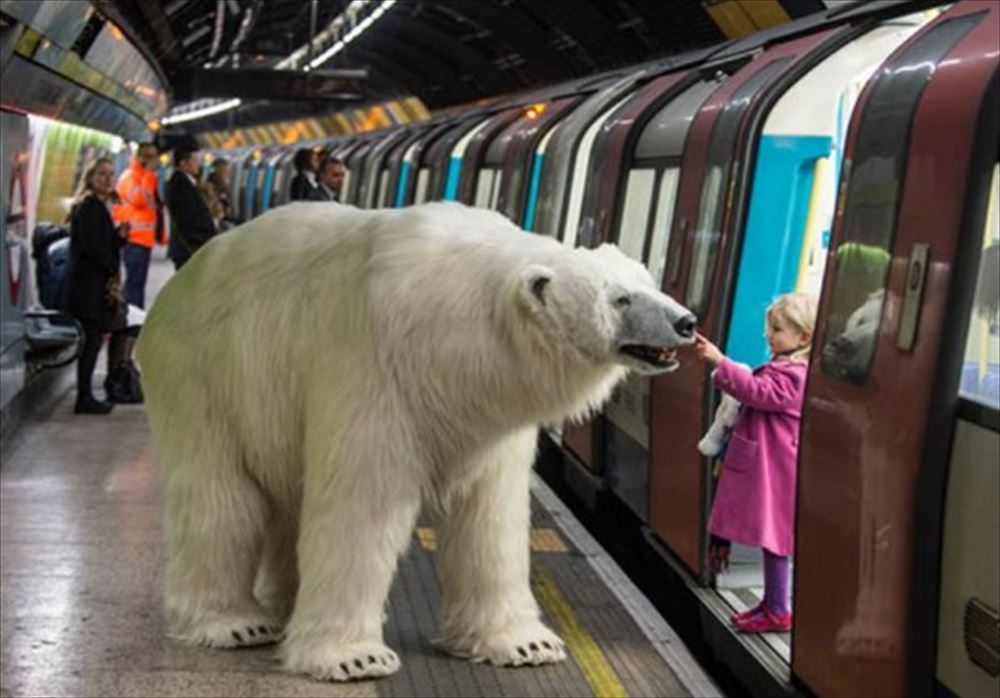 polar bear child stroking tube_R