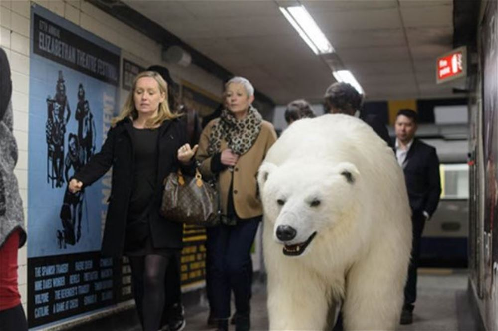 polar bear commuterse_R