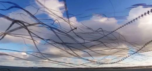 まるで空に模様を描いているよう!鳥の飛行経路をまとめた動画が、不思議な映像美