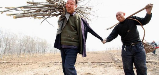 まさに現代の『木を植えた男』!盲目の男性と両腕を失った男性、2人で10年かけ1万本を植樹
