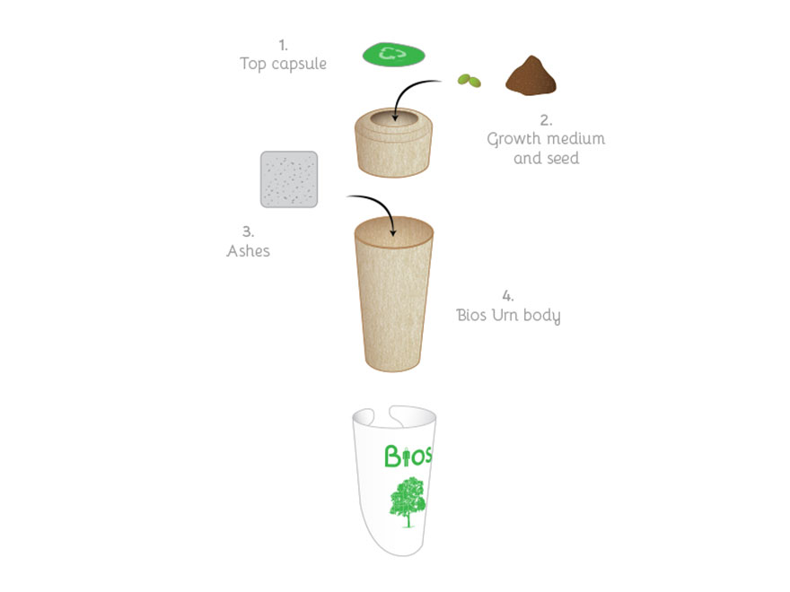 bios-urn-tree-after-life-biodegradable-2