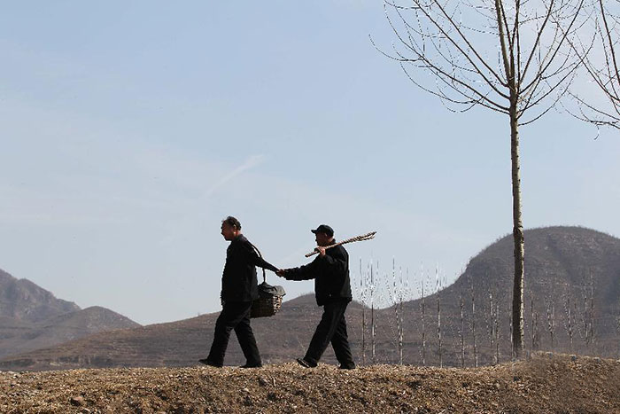 blind-man-amputee-plant-trees-china-1