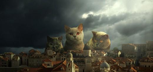『進撃の巨人』実写版よりインパクト大!?『進撃の巨猫』写真