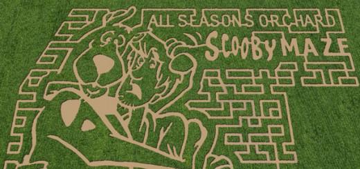 上空から見ると圧巻!トウモロコシ畑を使った巨大迷路アート