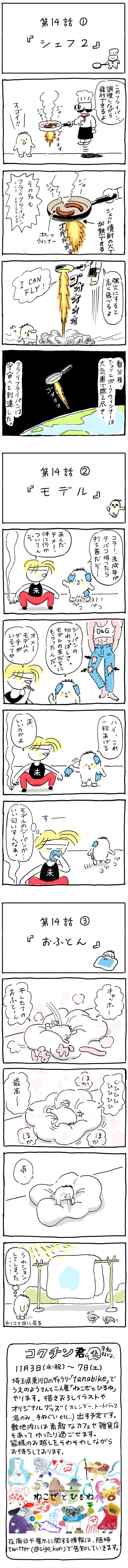 shigo14_R