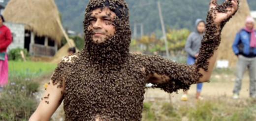 衝撃!裸で3万匹のミツバチをまとう猛者、ネパールに現る