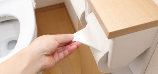 ドラクエ好きなら必見!?「トイレットペーパーの減り具合が均等になる画期的な方法」が話題
