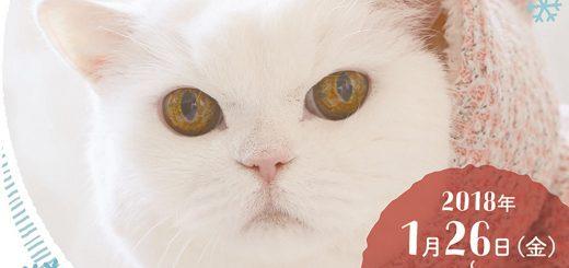 累計35万人動員!猫好きにはたまらない「ねこ休み展2018冬」開催