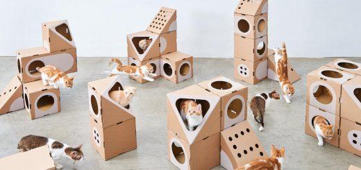 ネコさま大喜び!組み合わせ自由な猫用の小部屋「Room Collection」