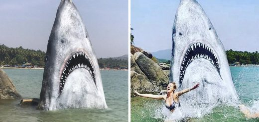 サメそっくりな岩にペイント!「ジョーズに襲われるビーチ」がインスタ映えすると話題