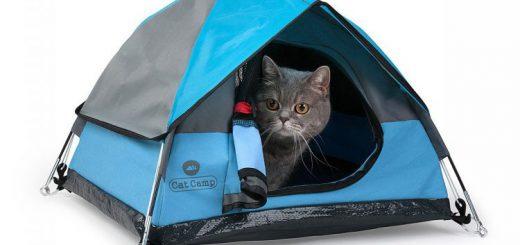 ネコ用テント「Cat Camp」がかわいい!キャンプ好き動物好きは必見
