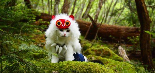 あの子は人間…じゃない!?『もののけ姫』サンのコスプレ猫がぐう可愛い