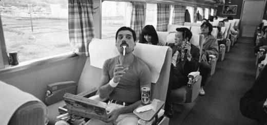 新幹線内のフレディを激写!駅弁を食べる写真が発掘される